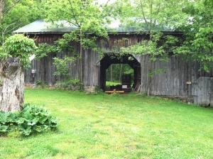 Old barn at Abingdon Vineyards